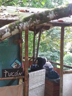 Adios, jungle cabana!