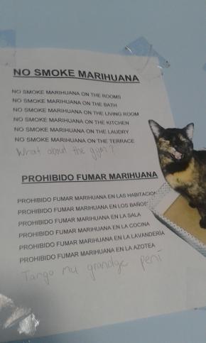 No smoking, Loki!