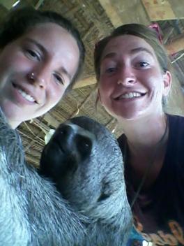 Obligatory sloth selfie