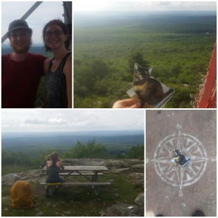 Another firetower, really happy that good views are coming back into our lives!!
