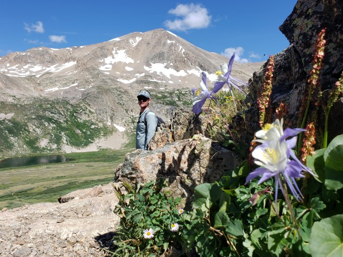 Columbines in front of Mount Democrat